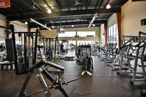 weight training space All Sport Health and Fitness